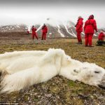 10 imágenes de cómo el humano destruye la Tierra