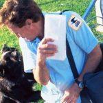 Carteros de Austria combatirán a perros agresivos con comida