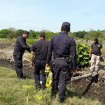 Cuatro hombre fueron asesinados en medio de una cañal en la hacienda La Bomba, Puerto El Triunfo. Las víctimas eran tres hermanos y su tío.