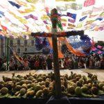 La Cruz de mayo espera para dar los frutos a quienes la visiten y le hagan una reverencia. Fotos EDH / Douglas Urquilla