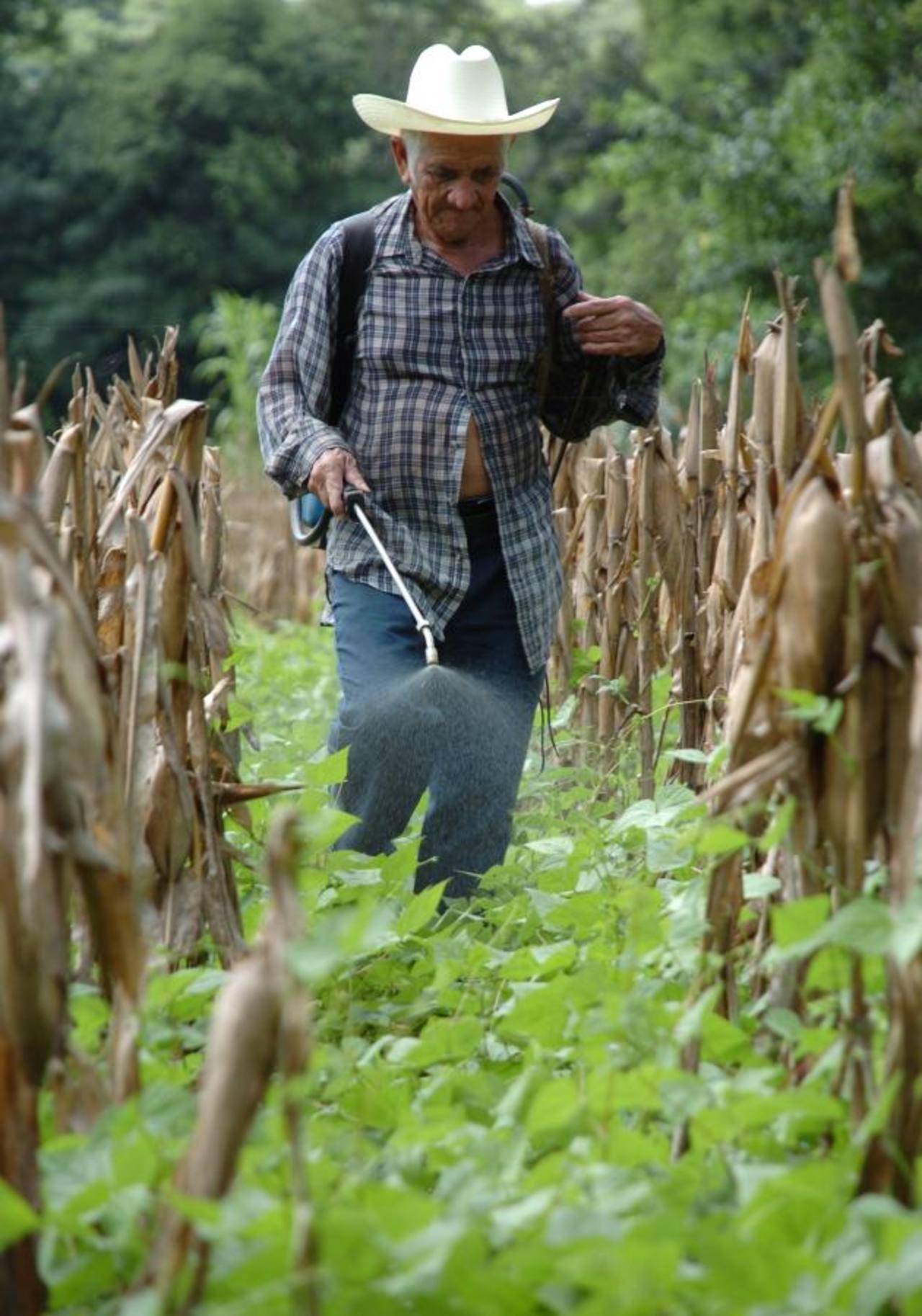 Los agroquímicos son utilizados para buscar obtener mejores rendimientos en la producción.