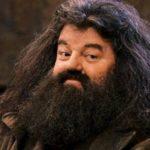 Una barba puede ensuciarse tanto como un inodoro