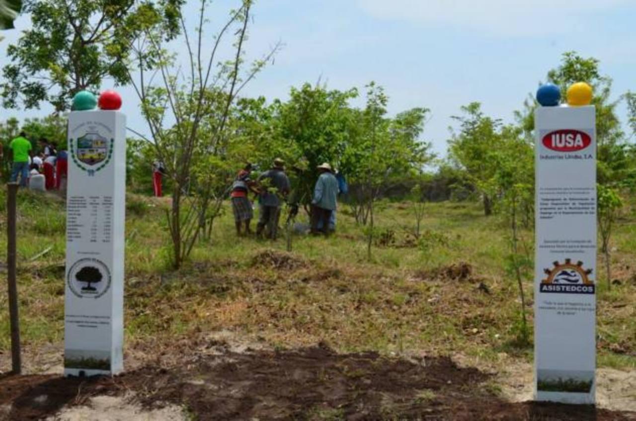 Con la campaña de reforestación se ha planificado sembrar unos 2 mil 500 árboles.