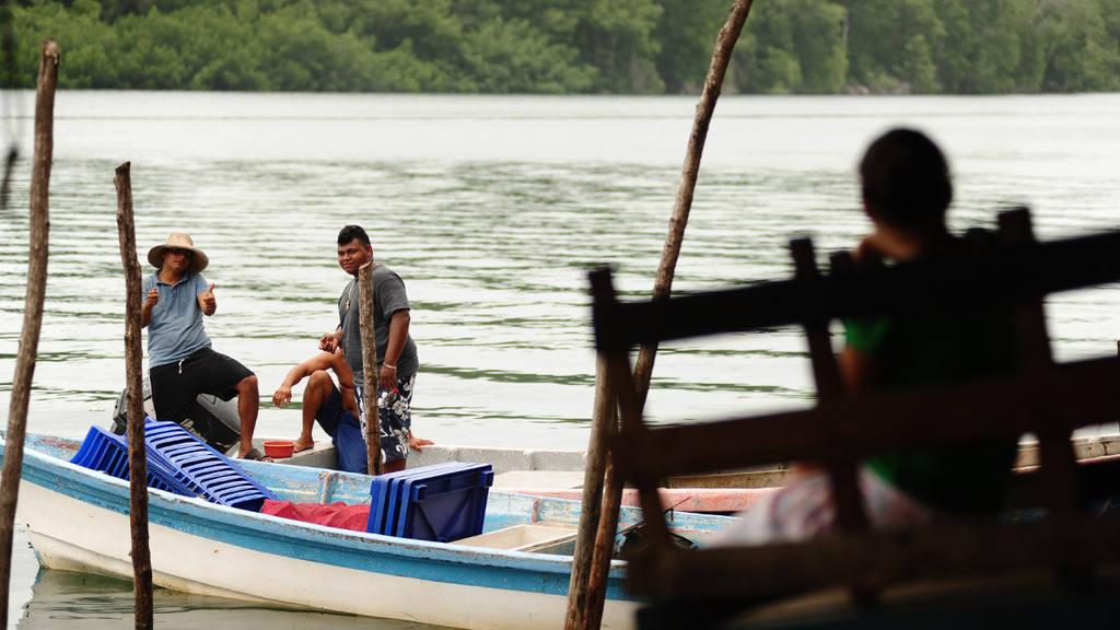 Sector pesquero