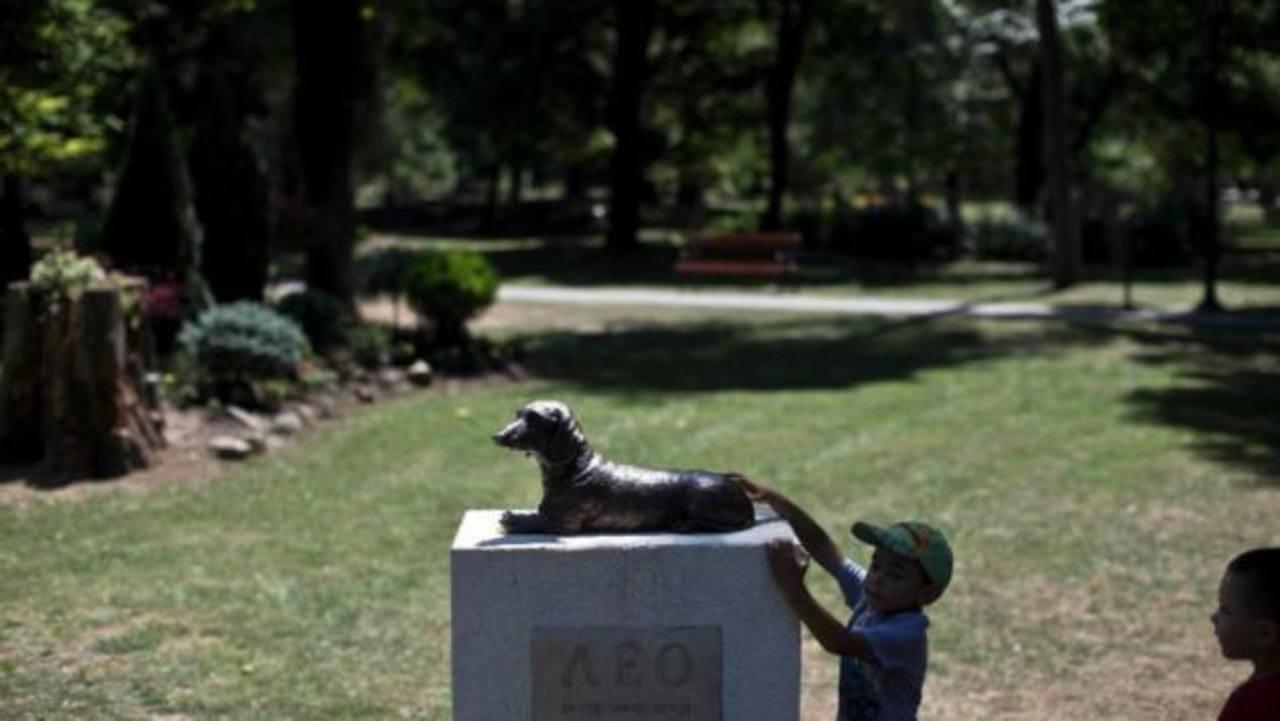 Honran con monumento a perro que murió defendiendo a niña en Serbia