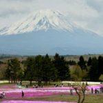 El monte Fuji, en la isla de Honshu Island, es la montaña más alta de Japón. foto edh