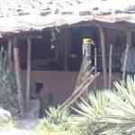 Las autoridades verificaron el triple homicidio en San Luis Talpa, La Paz.