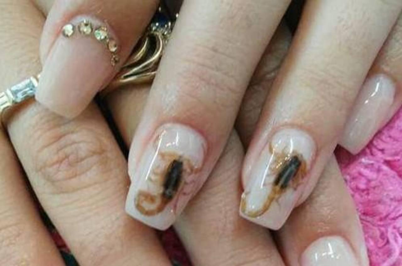 Pondrías alacranes vivos en tus uñas?   elsalvador.com
