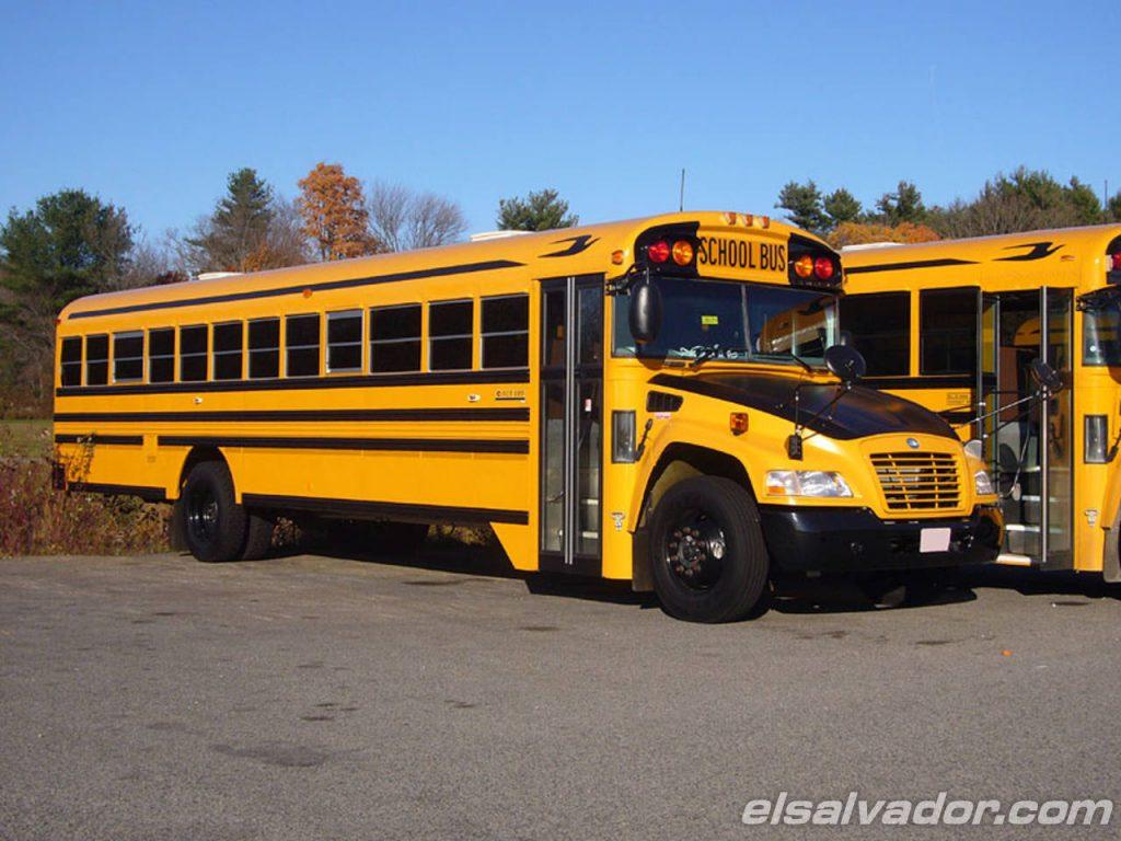 Grupo Olivo Invertir 225 4 Millones En Buses Nuevos