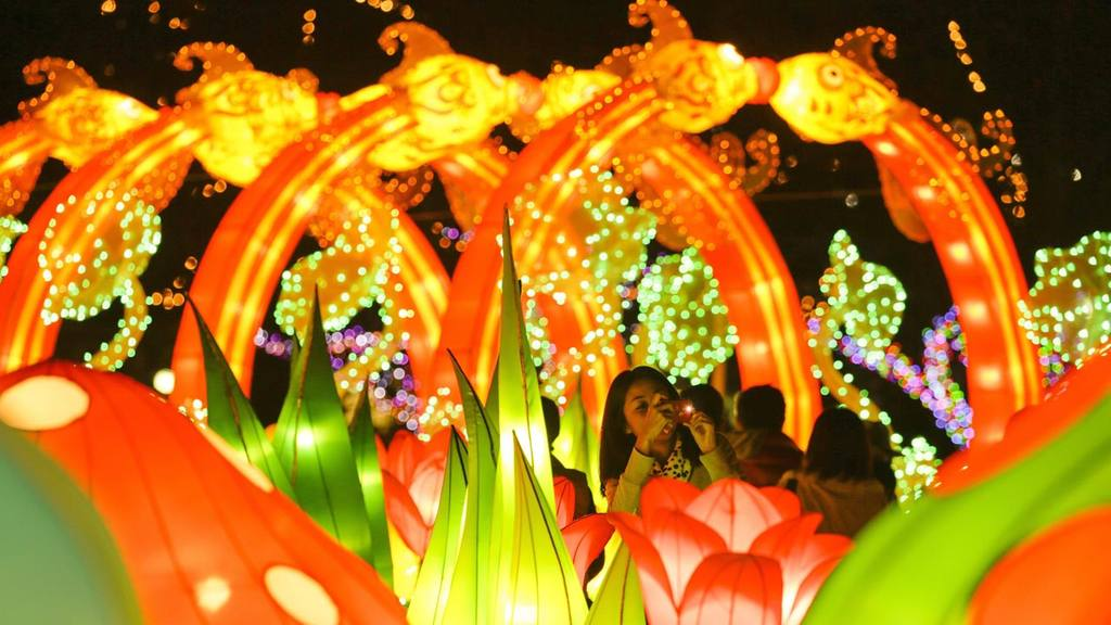 People enjoy illuminations of a fantasy world in Tokyo