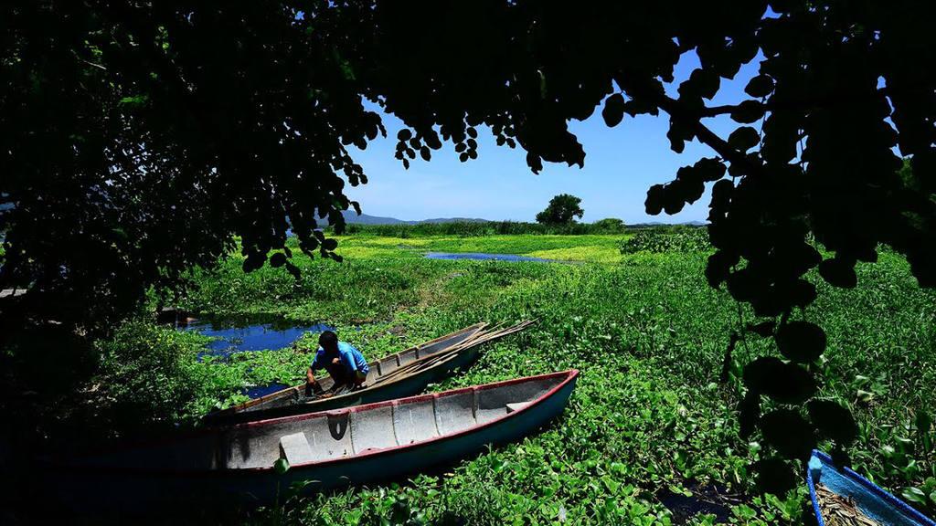 Laguna El Jocotal