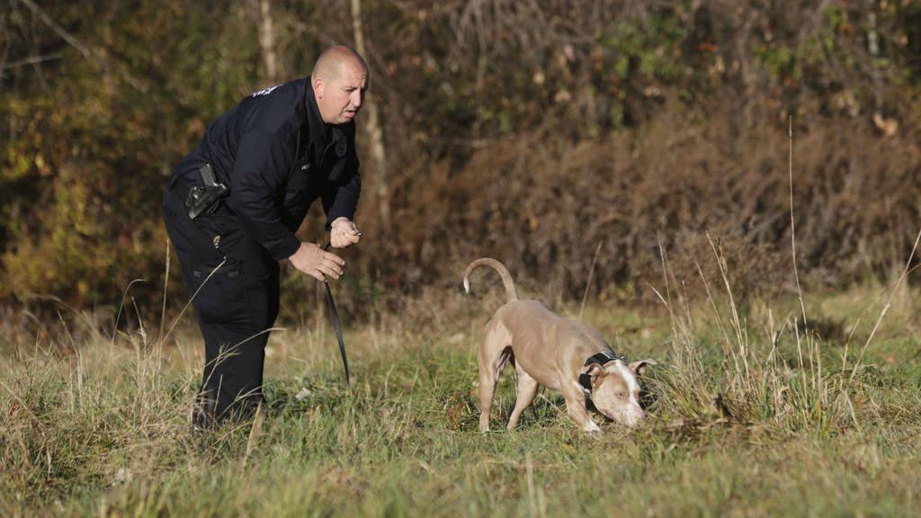 Una pit bull policía luchará contra el crímen