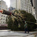 El árbol de Navidad del Rockefeller Center ya luce en Nueva York