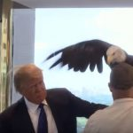 Donald Trump atacado por un águila en sesión de fotos