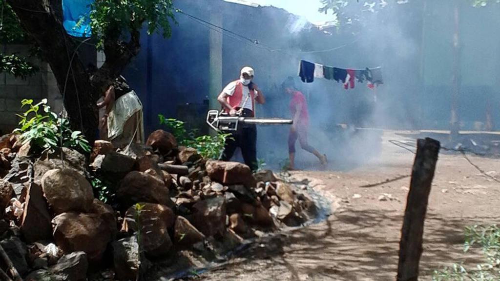 Ministerio de Salud sospecha de 240 casos de zika