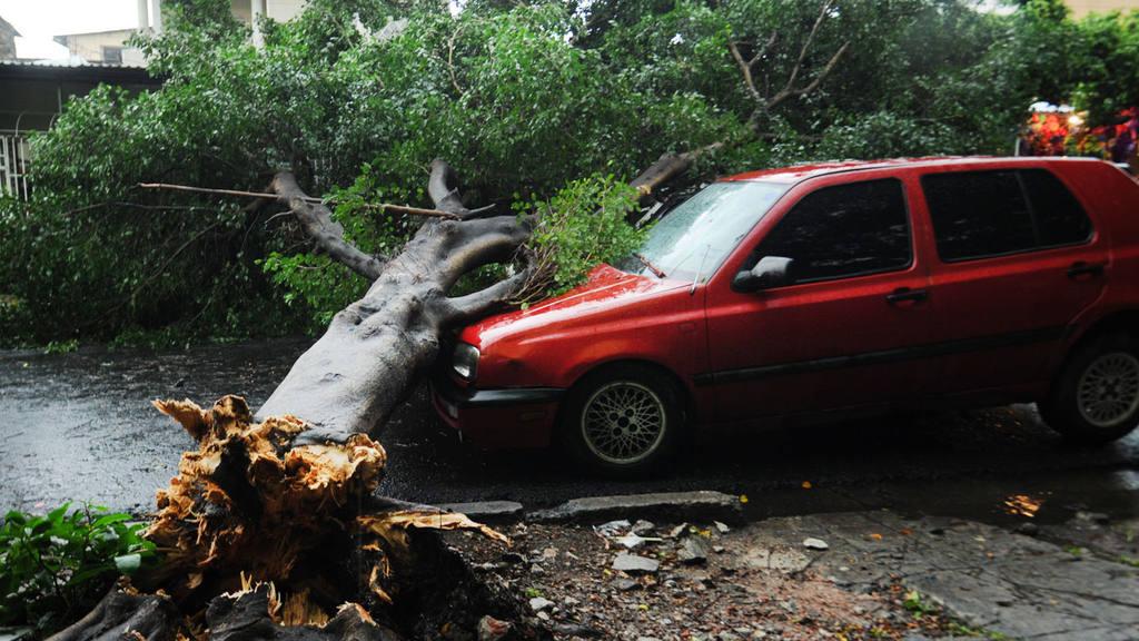 Lluvia, daños materiales, tormenta