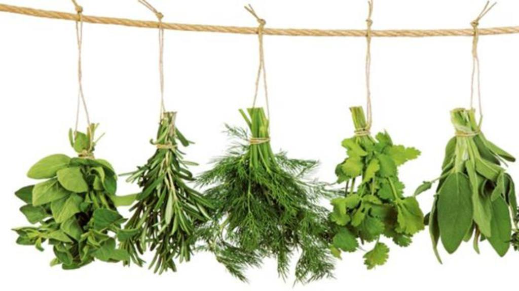 Hierbas arom ticas imprescindibles en la cocina for Asociacion de plantas aromaticas