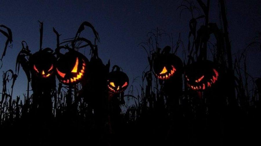 5 Sagas Terrorificas Para Disfrutar Halloween Elsalvadorcom - Imagenes-terrorificas-de-halloween