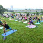 Yoga para todos. Yogashala