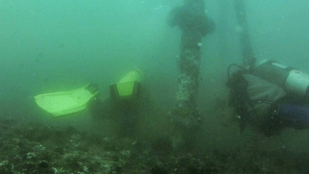 Buceando bajo el Muelle