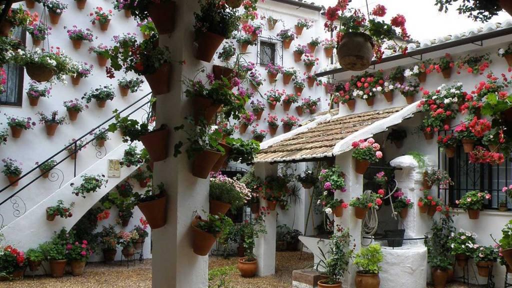jardineras en casas elsalvadorcom