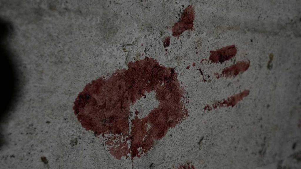 Asesinato niña