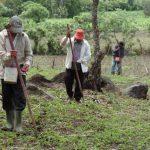 Ganaderos y agricultores preocupados por la sequía