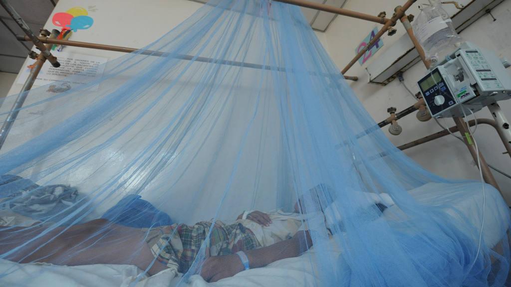 Los niños, especialmente los menores de un año, enfrentan más riesgo de padecer dengue.