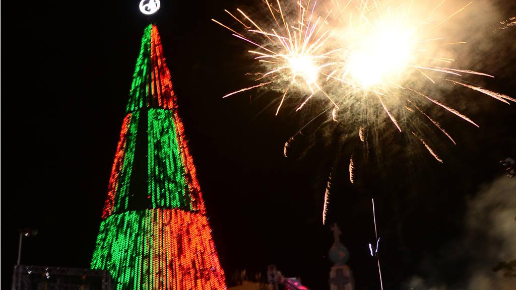 Encienden árbol navideño en Plaza Salvador del Mundo