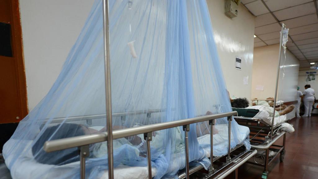 Los anteriores brotes de dengue y chikunguña han provocado miles de afectados en el país.