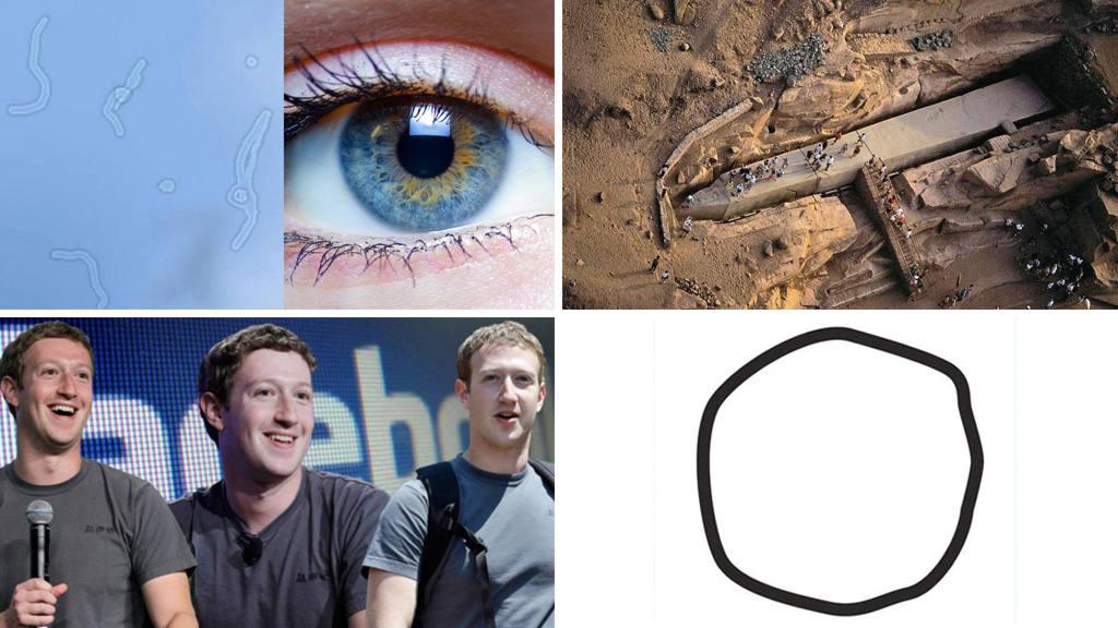 Curiosidades 2015