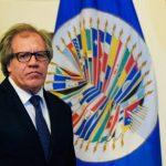 El secretario general de la OEA , Luis Almagro.