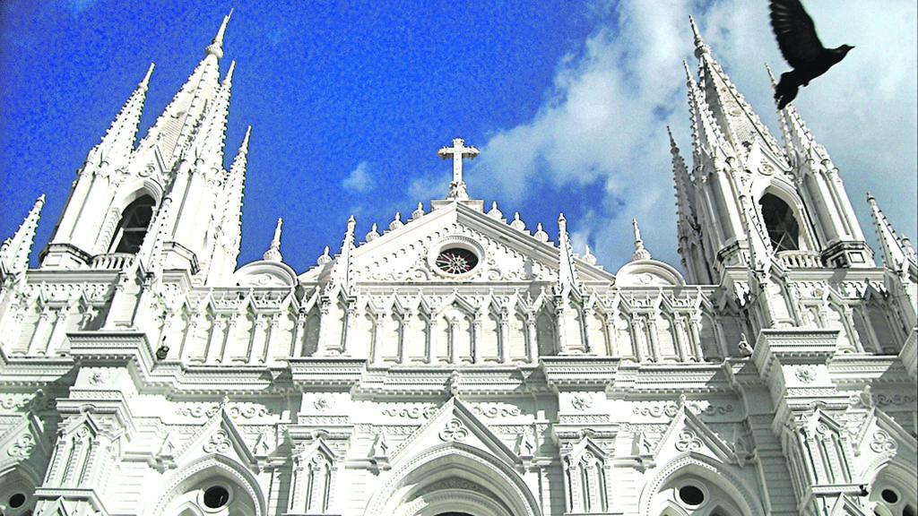 Palomas en iglesia Catedral