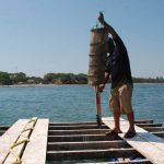 Una balsa con varias linternas contienen la semilla de la ostra japonés, que es parte del proyecto  de producción que tiene Fundatamarindo en la playa Las Mueludas.