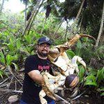 El turista cargó y se fotografió con el animal conocido como cangrejo de coco.