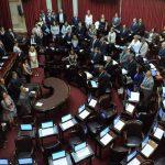 Vista de la sesión del senado argentino.