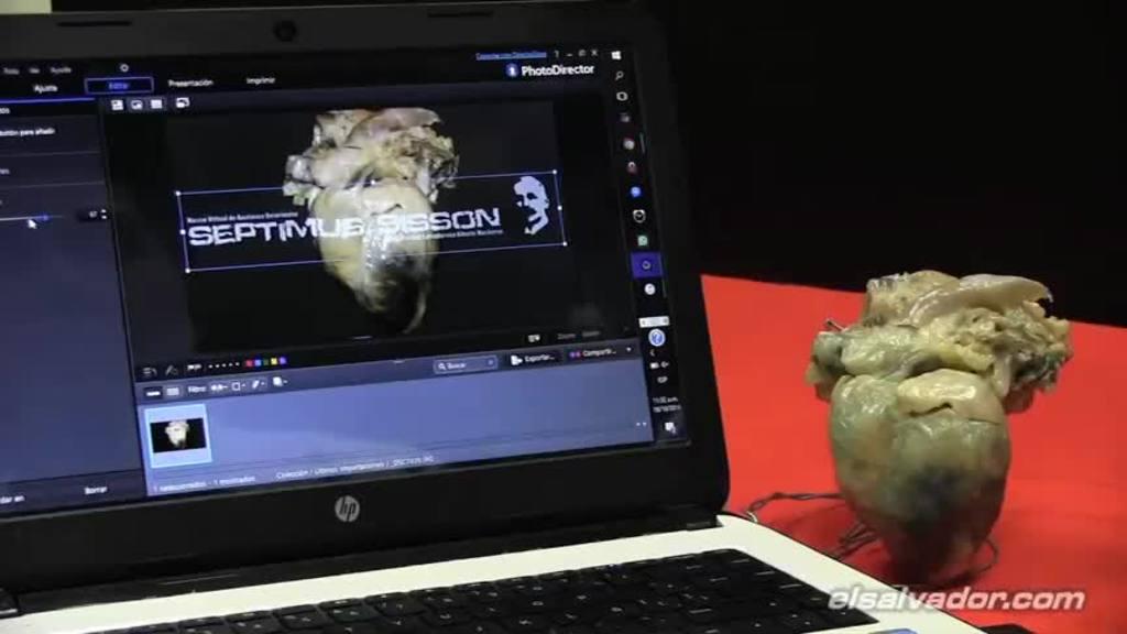 Recorre el primer Museo Virtual de Anatomía Veterinaria | elsalvador.com