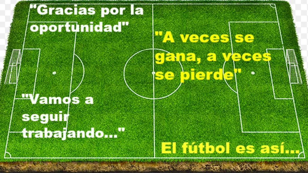 100 Frases Típicas Del Fútbol Noticias De El Salvador