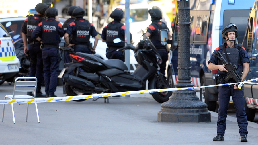 ¿Por qué tantos gatos en redes tras el atentado en Barcelona?