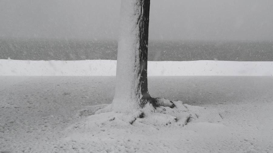 Tormenta nieve