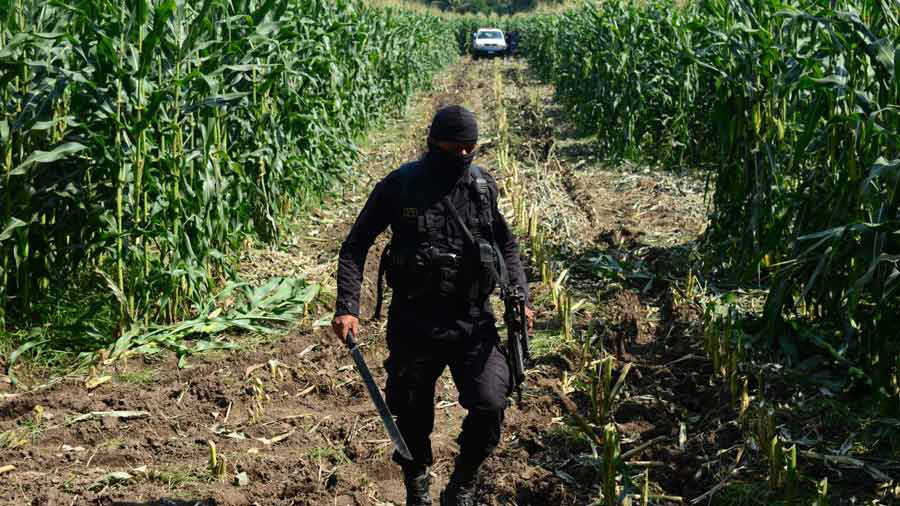 Homicidio de agricultores en Zapotitán