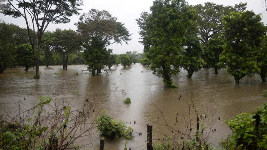 Emergencia-lluvias_15