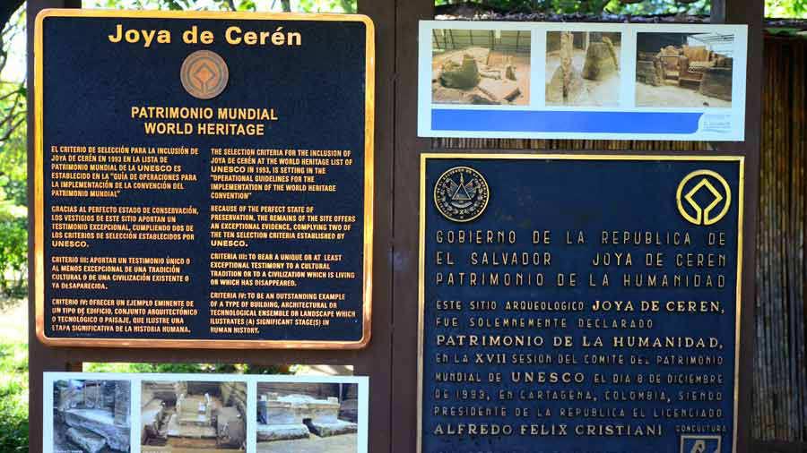 Ceren8