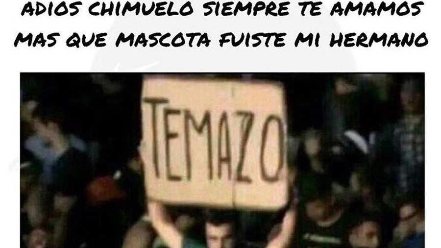 Chimuelo11