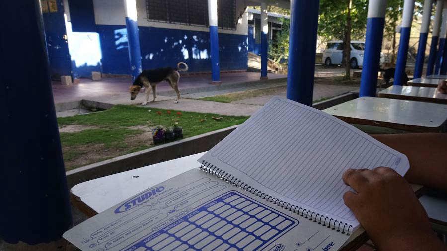Escuela-Los-Conejos_04