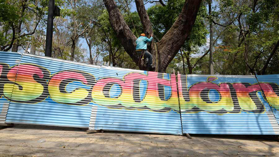 Parque-Cuscatlan-01