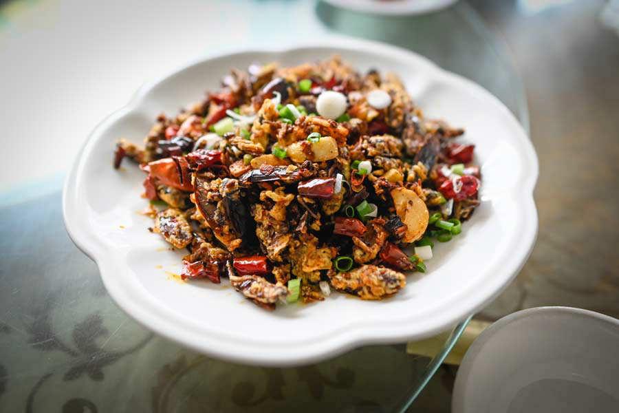 CHINA-FARMS-FOOD-COCKROACH