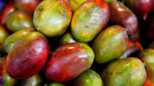 Mango-papaya