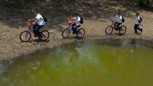 Estudiantes pedalean hasta cuatro kilómetros entre veredas y cañales en Sonsonate