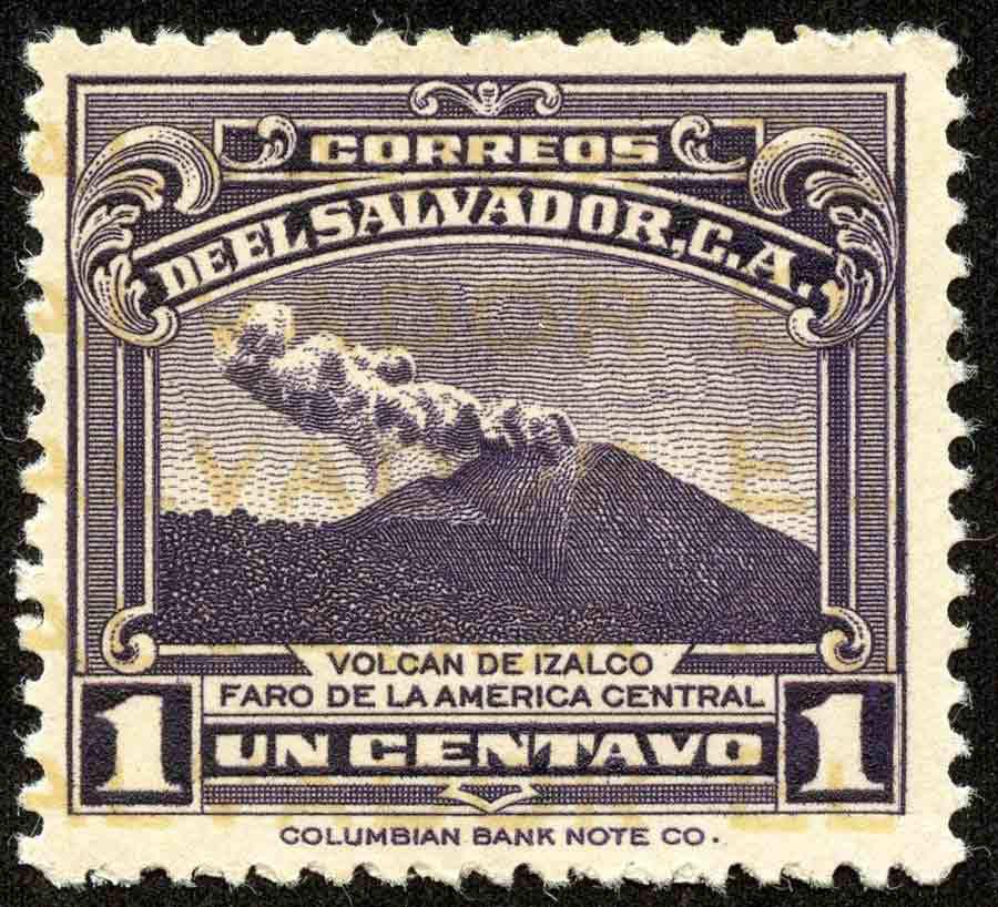 Salvador559